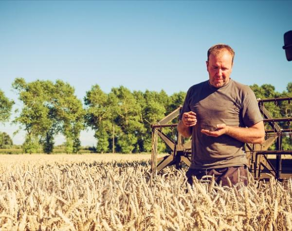 Crop Insurance helps farmers manage impact of Climate Change